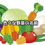 色々な野菜の名前
