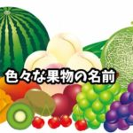 色々な果物の名前